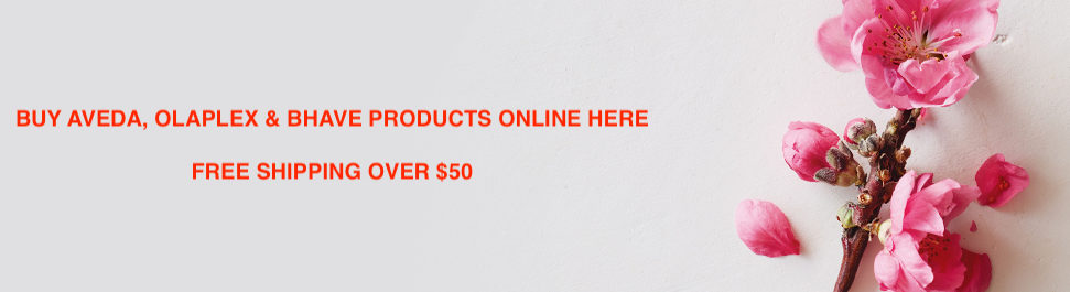 AVEDA Products Online Banner